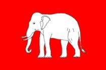 http://www.enfolang.com/img/cultura/elefante_tailandia.jpg